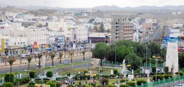 صورة معلومات عن مدينة خميس مشيط
