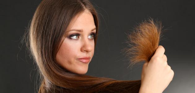 صورة طرق علاج تقصف الشعر