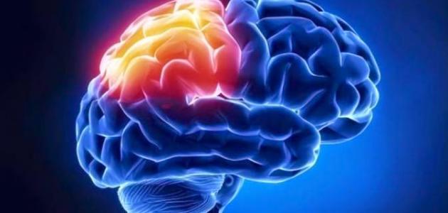 صورة الأورام السحائية الدماغية – فيديو