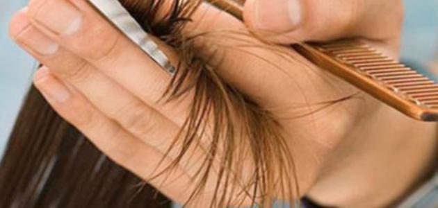 صورة طرق للتخلص من تقصف الشعر
