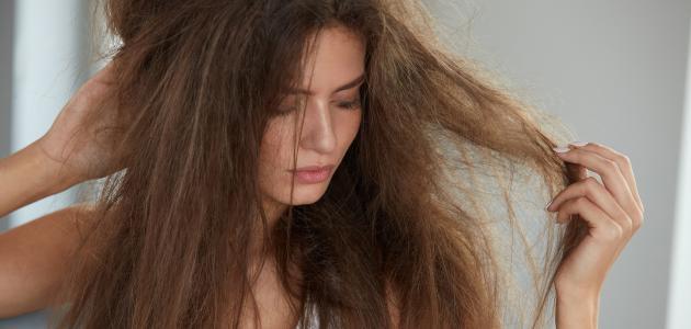 صورة علاج تقصف وخشونة الشعر