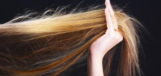 صورة طريقة التخلص من تقصف الشعر