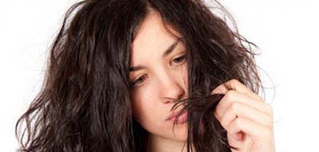 صورة كيف أعالج شعري من التلف