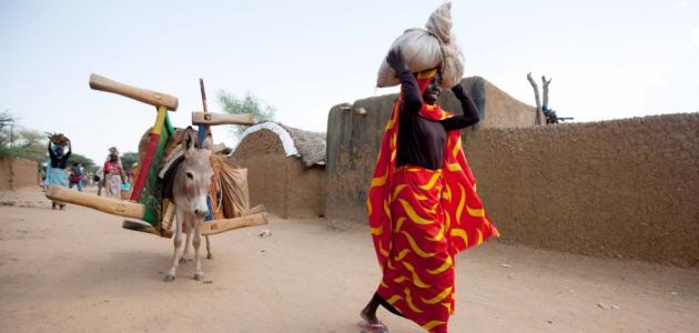 صورة مدينة مليط بشمال دارفور