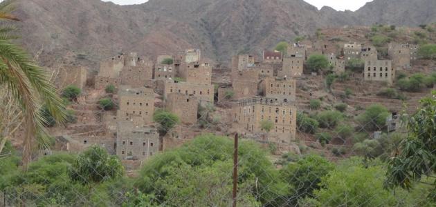 صورة محافظة لحج