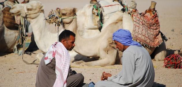 صورة أشعار العرب في الحكمة