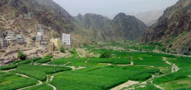 صورة محافظة لحج اليمنية