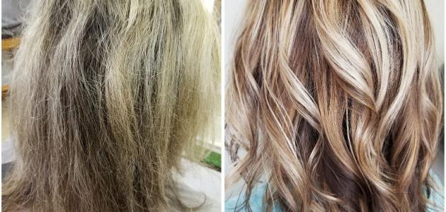 صورة الفرق بين تقصف الشعر وتشققه