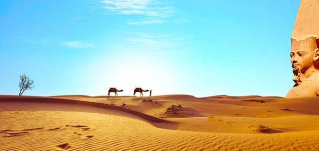 صورة أشعار عن مصر لأحمد شوقي