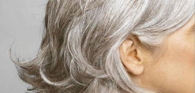 صورة كيف نصبغ الشعر الأبيض