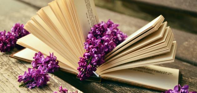 صورة أقوال عن القراءة