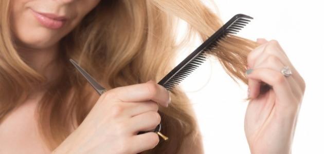 صورة كيف أعالج تساقط الشعر