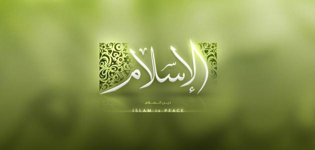 صورة الطريق إلى الإسلام