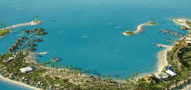 صورة مشروع جزيرة بنانا