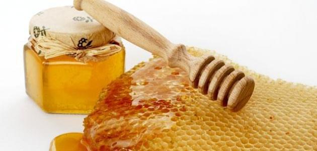 صورة فوائد عسل النحل السدر الجبلي