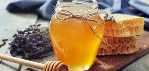 صورة فوائد عسل السدر الجبلي